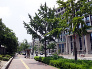 呉市役所前バス停